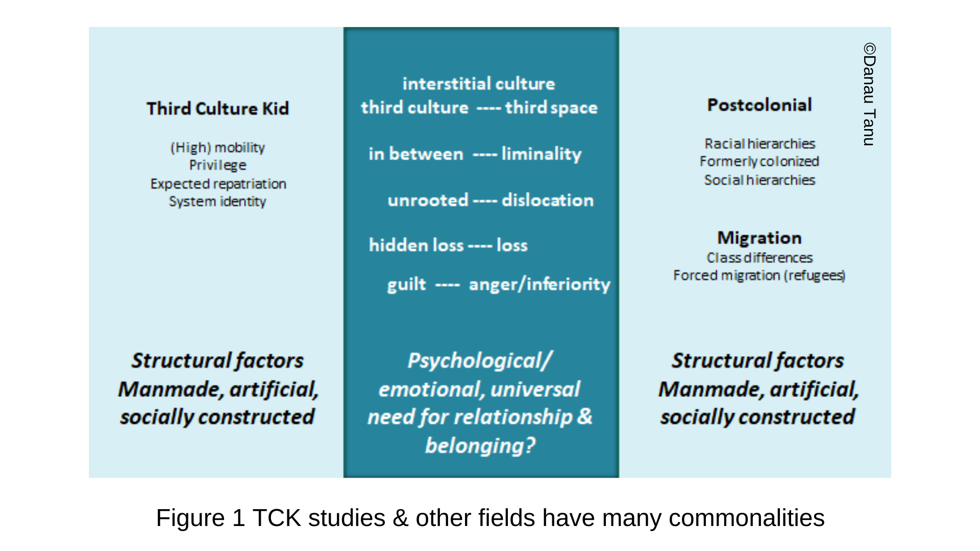 Figure 1 TCK studies & other fields have many commonalities