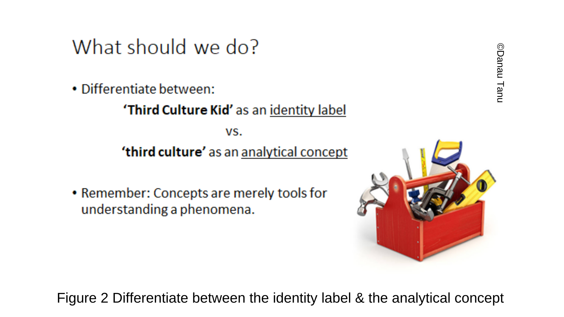 Figure 2 Differentiate between the identity label & the analytical concept